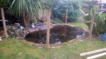 Pond, before our work..